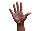 hand gesture - open poster