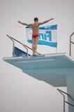 10 meter platform diver poster