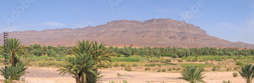 desert oasis with a fortress and mountains behind, zagora, draa