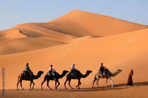 Foto op Canvas Marokko camel caravan in the sahara desert