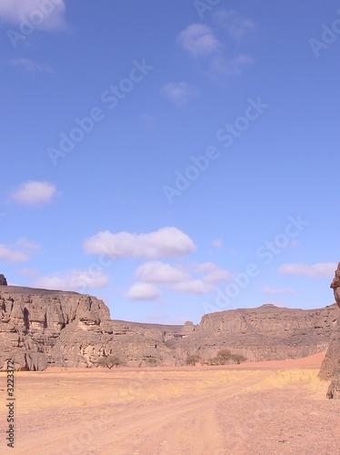 Tuinposter Algerije paysage du sahara algérien