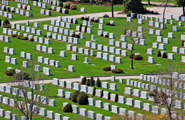 cemetery in sun light