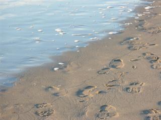 spiaggia invernale