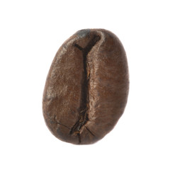 isolated macro shot of single coffee bean