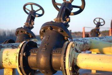 many valve
