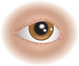 body parts eye poster