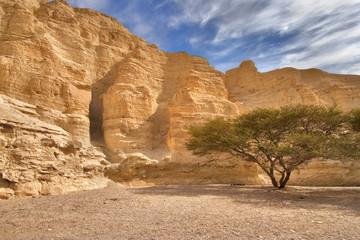 ancient walls of a canyon
