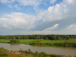 Wetland in the further south of Vietnam