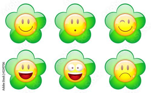Photo : kit de smiley fleur vert