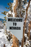 welcome to nevada poster