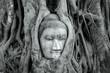 Leinwanddruck Bild - buddha