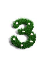 chiffre 3 pelouse fleurie