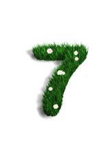 chiffre 7 pelouse fleurie
