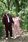 active seniors walk in woods poster