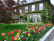 large house with tulip garden