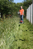 mowing weeds poster