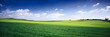 Leinwanddruck Bild - russia summer landscape - green fileds, the blue sky and white c