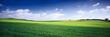 Leinwandbild Motiv russia summer landscape - green fileds, the blue sky and white c