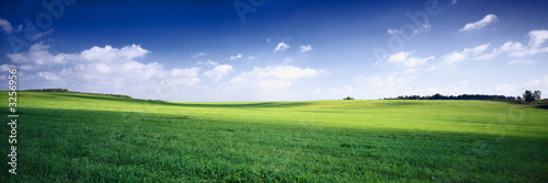 Foto op Canvas Landschappen russia summer landscape - green fileds, the blue sky and white c