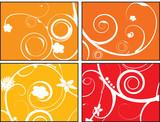 floral orange burst poster