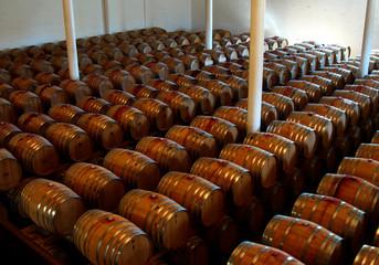 barrels in the wine cellar in franschhoek