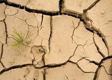 Nowa nadzieja - globalne ocieplenie