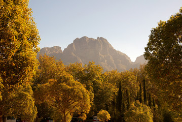 beautiful landscape on boschendal wine farm