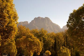 beautiful landscape on boschendal wine farm