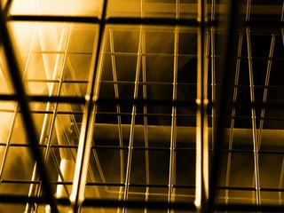 cage world