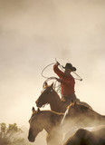 cowboy catching horses poster