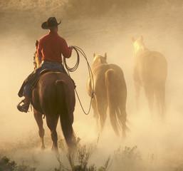 bringing the horses in