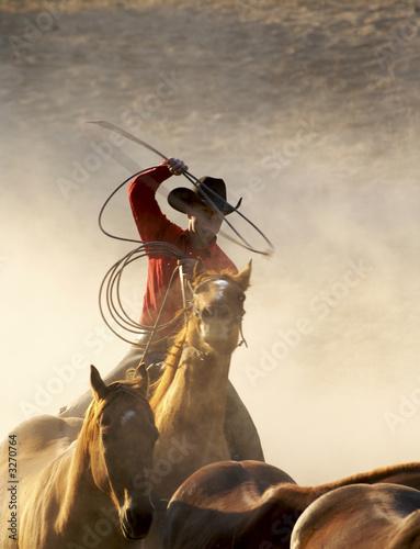 Fototapeten,cowboy,pferd,ocolus,westerbork
