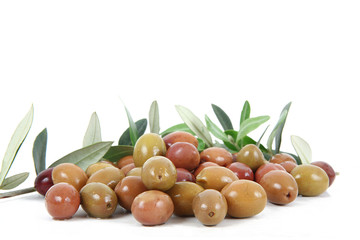 olive 22