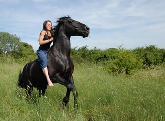 cheval sauvage