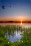 Fototapety sunset by the lake