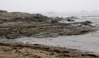 foggy rocky coast