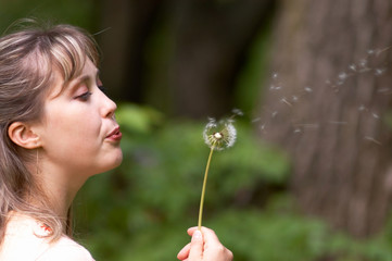 girl with dandelion ii