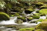 mountain stream - 3324909
