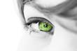 oeil regard de femme vert écologie environnement