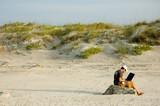 telecommuter on a beach working 4 - 3335155