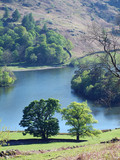 rydal water in spring sunlight poster