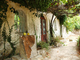 greek courtyard with grapevine poster