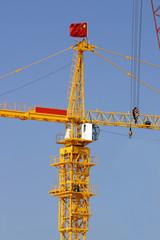 chinese crane