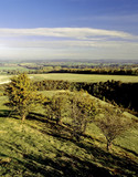 pegston hills poster