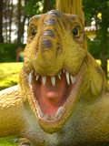 dimetrodon (dimetrodon grandis ) head