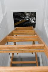 attic entry