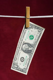 one american dollar attach to rope clothes peg poster