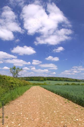 poster of mud track landscape