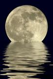 Fototapety 2400mm true full moon