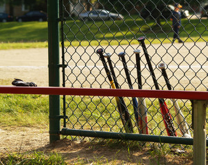 baseball bats and bench